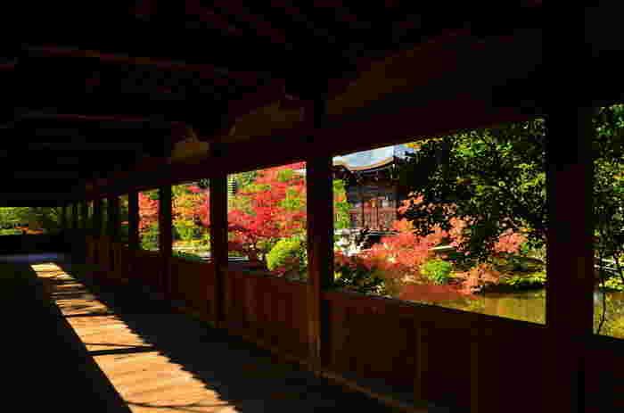 「清涼寺」の回廊。右手は「弁天堂」。渡り廊下の窓は、絵の額縁。紅葉の頃は、素晴らしい絵が眺められるはず。
