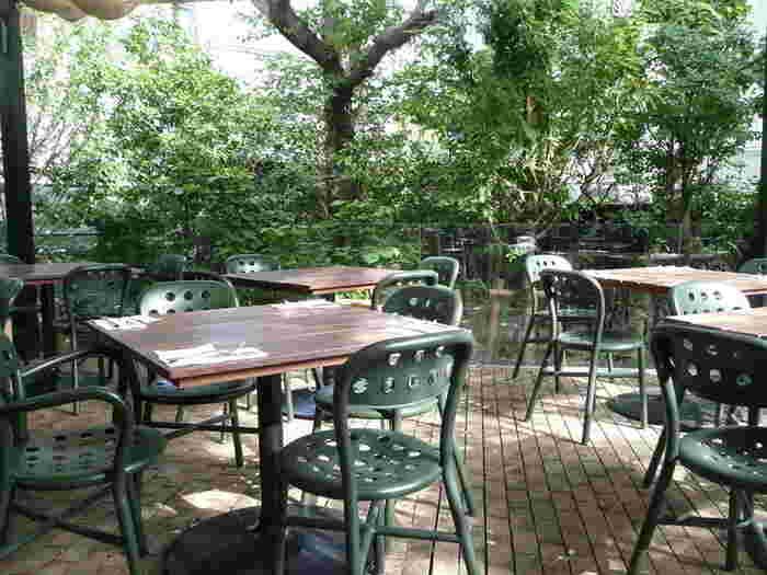 お食事だけでなく、鎌倉の豊かな自然を感じる雰囲気もおすすめのポイントです。築50年のアトリエをリノベーションした、大きなテラスが心地よい一軒家レストラン。緑がいっぱいの空間で、ゆっくり食事を楽しんでみませんか。