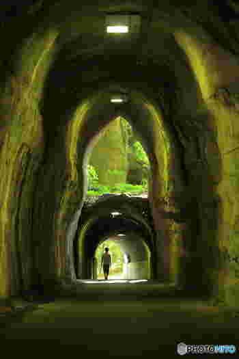 養老渓谷の駐車場から散策道に向かうところにあるトンネルは、入口がひとつなのに出口が2つという不思議なトンネル。元々は上側にあった出口を、下側に設けたほうが良いと新たに工事をした際、上側の出口をそのまま残したことでこんな構造になったんだそう。上の出口から入る太陽光がトンネル内を緑色に照らし、幻想的な雰囲気です。