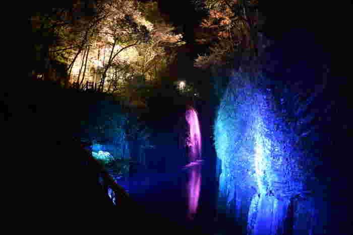 夏は、滝の周辺が夜ライトアップされ、幻想的な眺めも楽しめます。
