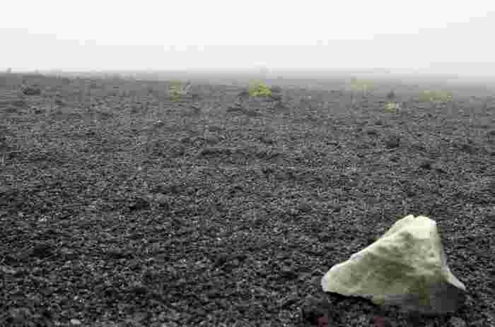 黒い地面が広がる「裏砂漠」は、どこにいるのかと思うほどの光景。ぜひその景色を体感してみてくださいね。ちなみに、「裏砂漠」には駐車場もありますので、伊豆大島でレンタカーを借りて観光する予定の方でも安心ですよ。