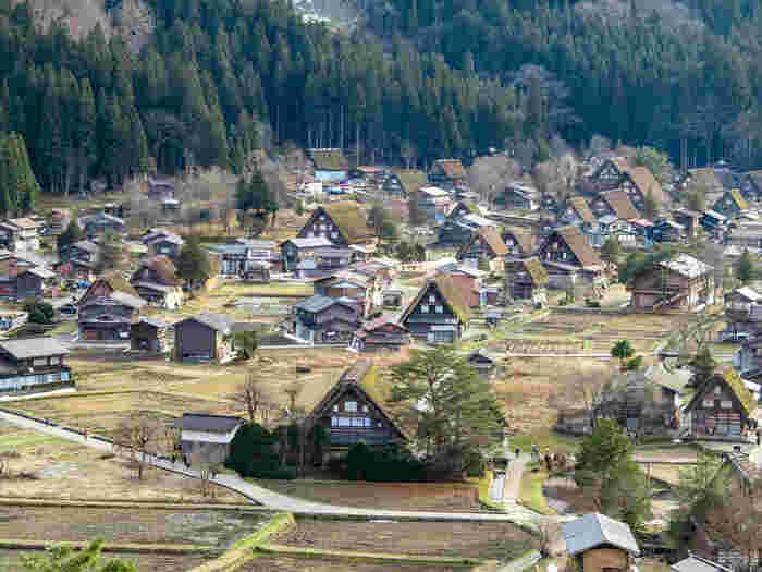日本有数の豪雪地帯としても知られる白川村。その村に広がる合掌造りの集落「白川郷」は、昭和51年には国の重要伝統的建造物群保存地区として認定され、平成7年にはユネスコの世界遺産に登録されました。 集落の全域が重要伝統的建造物群保存地区になっていて、合掌造り家屋59棟の他、寺院本堂や神社の鳥居、ハサ小屋、板倉、水路など、特定された歴史的景観が維持されています。