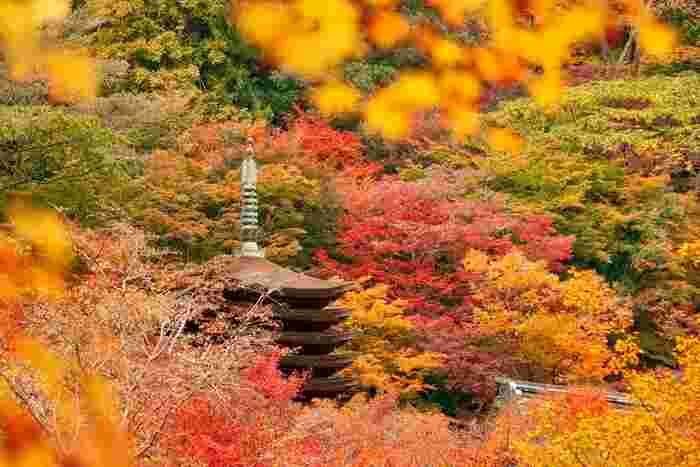 境内には、重要文化財に指定されている十三重塔をはじめ、大小様々な社殿があります。晩秋になると約3000本におよぶカエデが鮮やかに染まり、錦絵のような景色を眺めることができます。