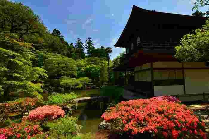 観音殿(銀閣)では四季折々で美しい風景を見せてくれます。春は、東山の豊かな新緑と境内で咲いている花々に彩られ、華やかな雰囲気を醸し出しています。