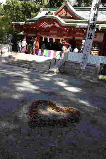 熱海駅のお隣の駅である来宮駅から徒歩5分ほどの距離にある來宮神社は、お願い事が叶うといわれるパワースポットです。実はこちらの神社は、「心さやかに参拝できる環境づくり」をテーマに、参詣者が気持ちよくお参りできるよう、細かな点まで心配りされているんです。このハートの落ち葉は猪目という模様で、巫女さんたちが掃き集めているもの。恋愛成就や縁結びにご利益があると人気になっているんですよ。