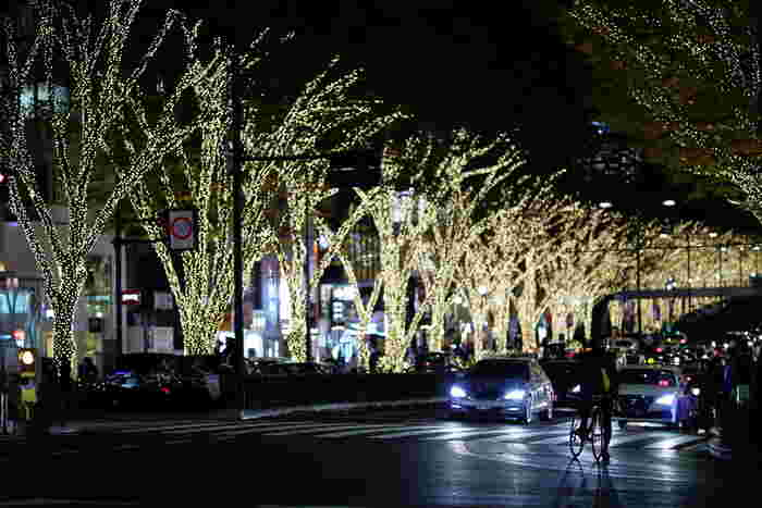 11月30日~12月25日までは、表参道のケヤキ並木は一面シャンパンゴールドに輝くイルミネーションに彩られます。表参道ヒルズと合わせてぜひお出かけしましょう。