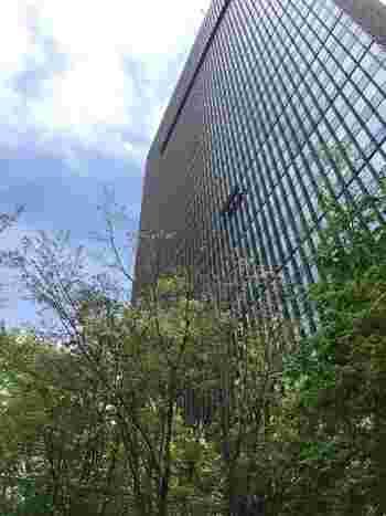 最後にご紹介するのは、世界的に有名なスモールラグジュアリーホテル「アマン」初の都市型ホテル「アマン東京」。超高級ホテルにお泊まりするのは難しいけど、アマンで贅沢なアフタヌーンティーはいかがでしょう。