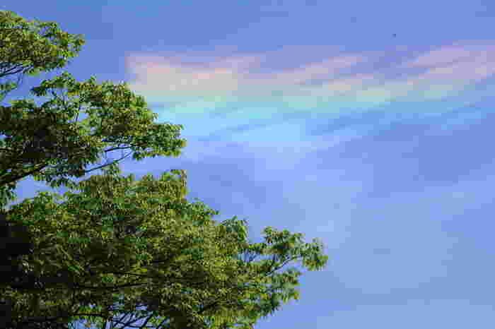 スピリチュアルな彩雲の意味とは、天や宇宙からの肯定を表すのだとか。「よく頑張っているね!」「そのままで大丈夫」というメッセージという捉え方もあるようです。