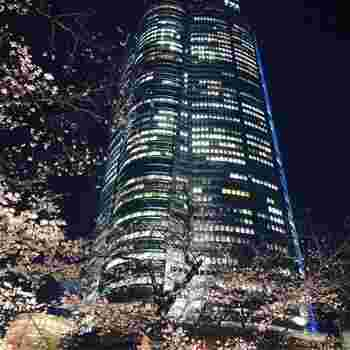 ショッピングモール・美術館・ホテルなどを有する54階建ての森タワーを中心に、ホテル・シネコン・タワーマンションなど複数の施設が建ち並ぶ「六本木ヒルズ」。森タワーの52階には展望台もあり、都心の夜景を一望できます。