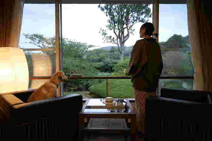 伊豆最古の湯の町といわれる修善寺。愛犬との温泉旅行を楽しむなら、修善寺道路の修善寺ICから車で約5分の所にある「絆」がおすすめです。開湯1200年の歴史ある温泉を愛犬と共に楽しめます。館内にはワンちゃん用のアメニティも充実!