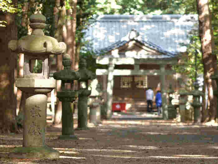 鳥居と同じで、参道の真ん中も神様の歩く場所。参拝者は、左右どちらかの端を歩くようにします。