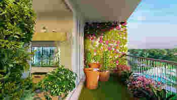 風通しや日当たりが良く、植物が生育するのに恵まれた環境の場合が多いので、グリーンウォールや家庭菜園も楽しめます。