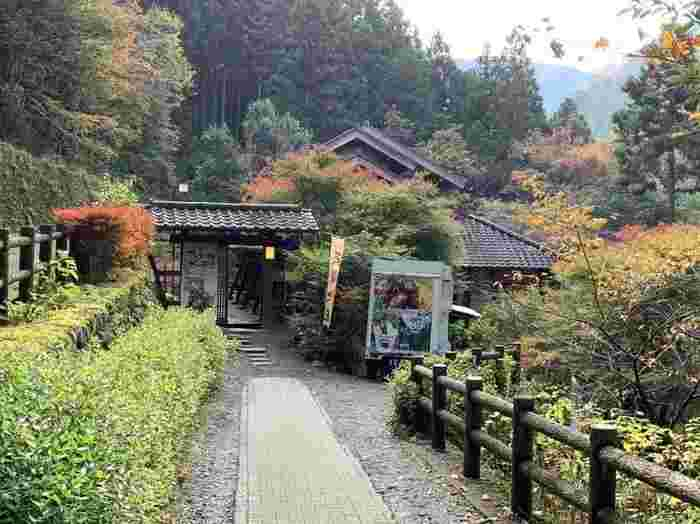 多摩川の渓流沿いにある「森の中のお肉レストラン アースガーデン」は、絶品お肉料理がいただけるお店です。