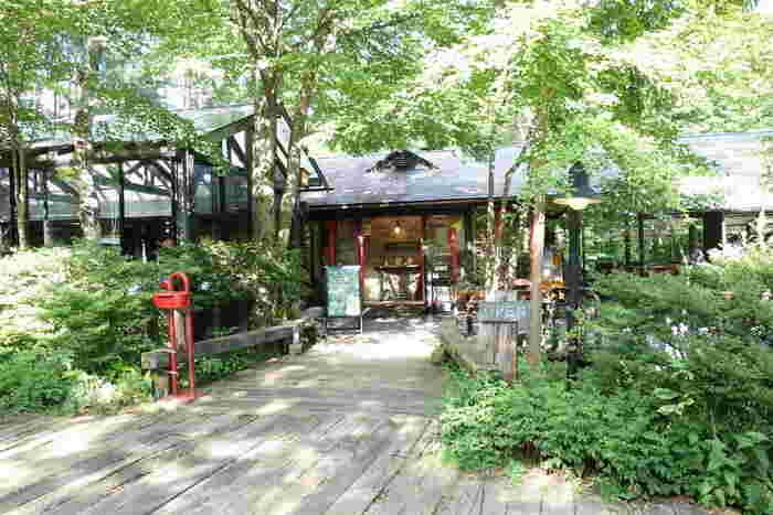 清里方面へ抜ける山間の一角にある、カフェレストラン、ギャラリー、ステージ、中庭、そして程よく手入れされた雑木林が揃った、自然のテーマパークのような施設。ここは、タレントの柳生博さんが家族で営む「八ヶ岳倶楽部」です。