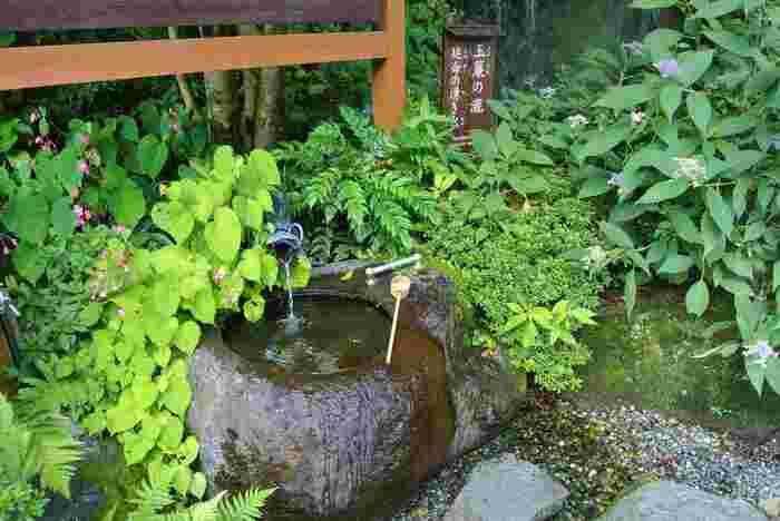 """それは、太古から""""水""""には、物事を浄化させる偉大なる霊力があると、敬服していたからに違いありません。 【「玉簾の瀧(たまだれのたき)」傍らにある「延命の湧き水」。溶岩の層に濾された湧水は、柔らかな口当たり。「玉簾の滝」は、日帰り入浴で人気のホテル「天成園」の敷地内。利用者以外でも自由に見学できる。】"""