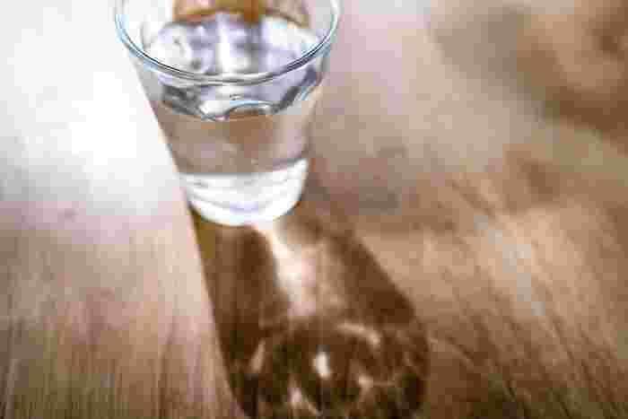 むくみや腸活のためにも。正しく知りたい「水分補給」の心得