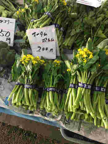 その季節にしか味わえない旬の野菜が並びます。