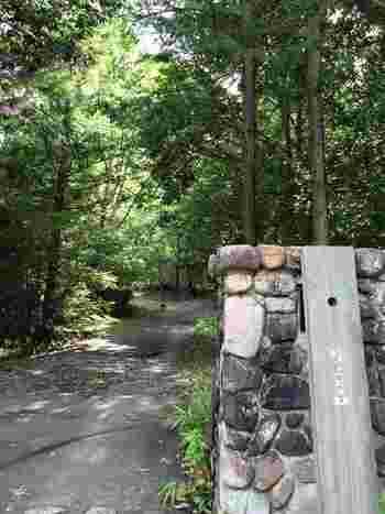 入口には石積みの門。思わず深呼吸したくなるような心地いい森は、店主の藤川さんが枝を落としたりこまめに手入れをされているんだそう。  立てかけられた木の看板も素敵で期待が膨らみますね。「吹上の森」は、この辺りの昔の地名から名付けられたそうです。