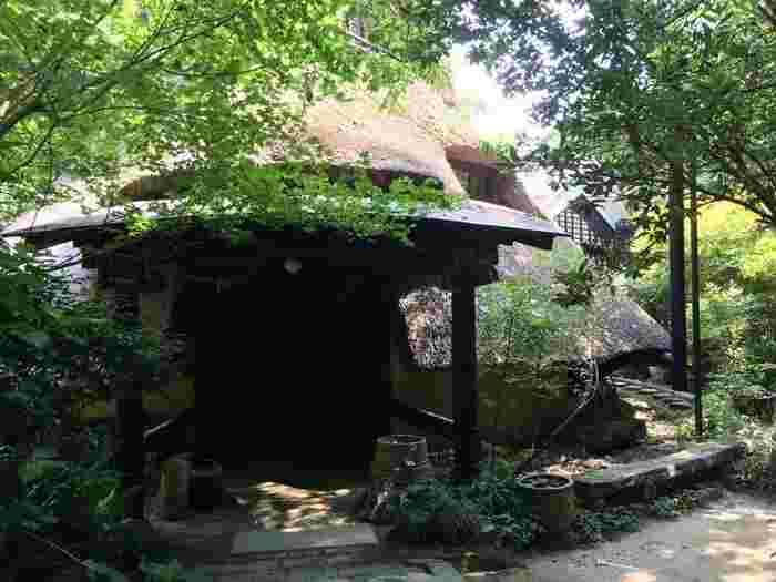 """車で山道を登っていくと恐らく途中で、「ホンマに、こんなとこにお店があるん?」と疑うかもしれません。『茶房 まだま村』は、まさに""""人里離れた""""竹林の中にある、かつて隠れキリシタンの里だった歴史ある場所です。"""