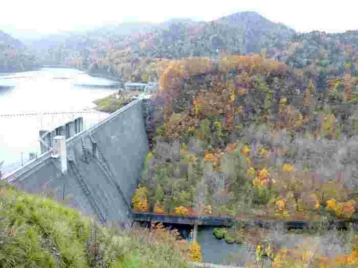 北海道富良野にある多目的ダム。 ダムによってできたかなやま湖にはさまざまな生物が生息し、四季折々の風景を楽しませてくれます。