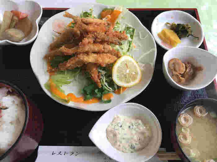 精進湖で釣れたわかさぎをフライにしたわかさぎ定食をはじめ、富士五湖ならではのメニューが食欲をそそります。