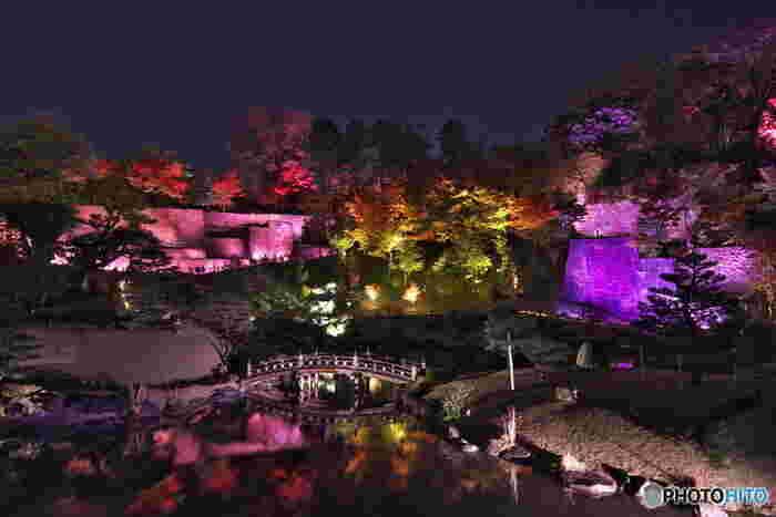 玉泉院丸庭園では夜間のライトアップも実施されています。庭園の中央に位置する池の水面が、ライトアップされた樹々や橋を鏡のように映し出す様は幻想的でいつまで眺めていても飽きることはありません。