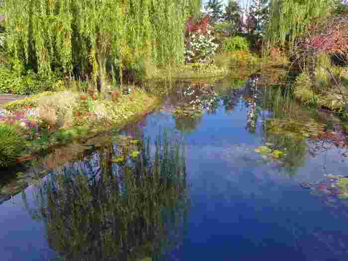 中でも、睡蓮の庭は印象派のクロード・モネが愛した「ジヴェルニーの庭」、そしてモネの代表作「睡蓮」をイメージして作られた美しい空間になっています。