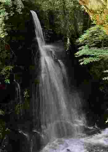 湯河原駅からバスで10分ほどの場所にある不動滝。滝の音や流れが、私たちの心を癒してくれます。