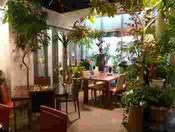 店内に入ると、植物に囲まれたカフェ空間が出現! ちなみに飾られているプランツは購入可能だとか。
