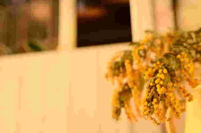ミモザははっきりとした色合いがだんだんと味のあるくすんだ色味に変化していくところも楽しめます。窓辺に吊るしておくだけで心を癒してくれる黄色いカーテンが出来上がります。