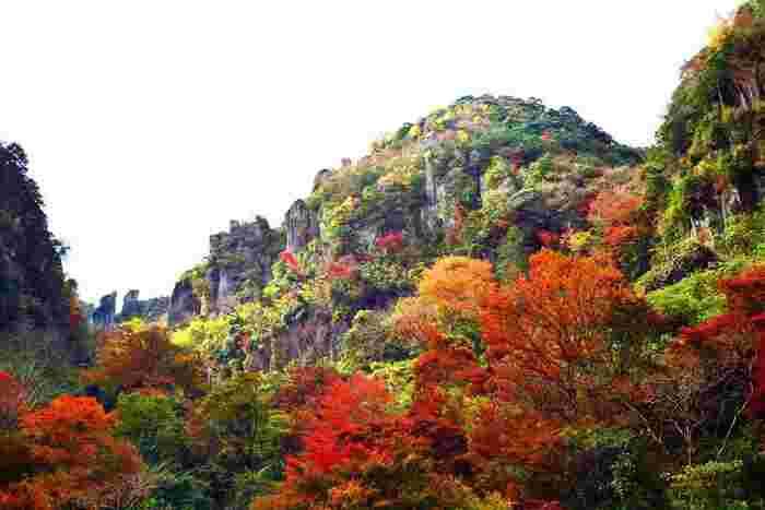 大分県中津市にある「耶馬溪」は、日本新三景・日本三大奇勝・名勝に指定されています。1年中壮大な風景を楽しめる耶馬渓ですが、紅葉のシーズンは、ダイナミックな奇岩と赤・橙・黄の美しいコントラストを満喫できます!耶馬渓の中でも特におすすめなのが「一目八景」です。群猿山、仙人岩鳶、烏帽子岩などの奇岩を一望できる大人気のスポットで、一目八景展望台からの眺めはまさに絶景です。