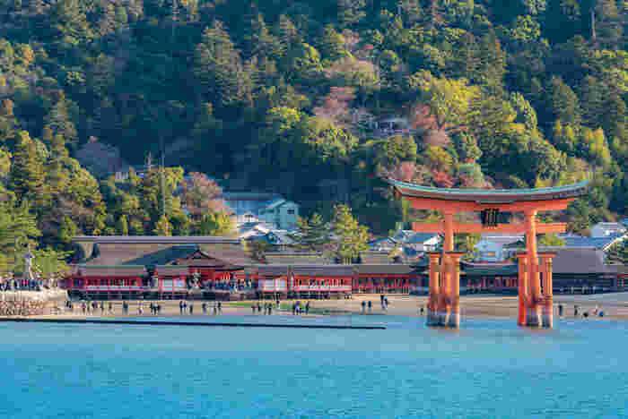 古くから「神が宿る」とされる「宮島」は日本三景の一つ。 神社仏閣や弥山の絶景、水族館からグルメまで、ここにしかない魅力がギュッと詰まった島です♪