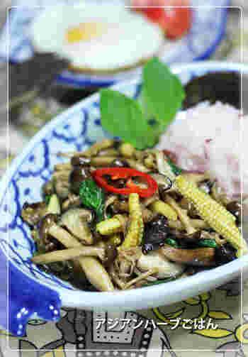 食べ応えのある野菜をふんだんに使うことで、お肉がなくても充分満足できます♪バジルのアクセントがポイントだそうです。