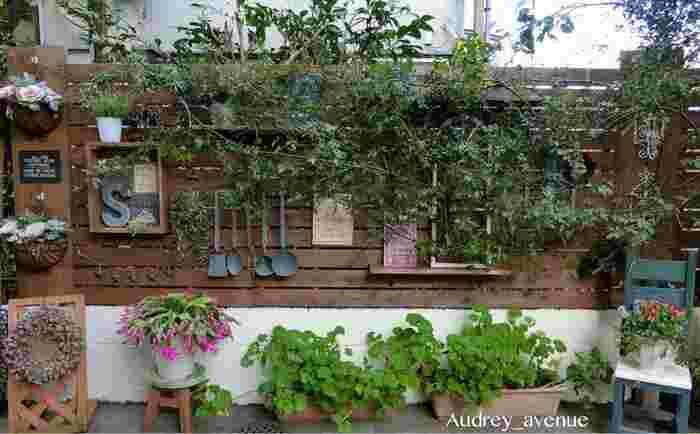 モッコウバラの花のない時期は、鮮やかな寄せ植えを添えるとお互いが引き立って素敵ですね!