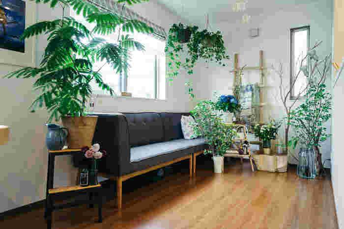 高低差をつけながら表情豊かにインテリアグリーンを飾るこちらのお宅は、ディスプレイのアイデアが満載。大小サイズを変えることで、植物の種類やバリエーションが豊かになり、まるで森のような心地良さをもたらしています。