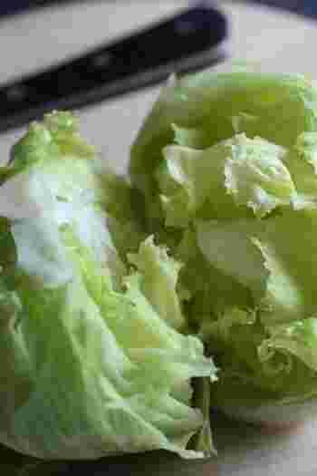葉物野菜は洗って使いやすい大きさにカットしたら、ジップロックへ。このひと手間があるだけで、ごはん作りの時間をぐっと短くできます。ジップロックには日付を入れるようにしておくと、使い切りやすくなります。