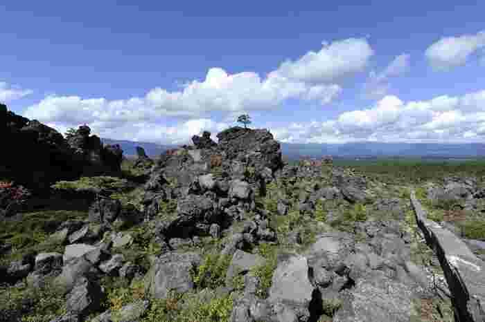 二つ目は、温泉や火山など地中の物質が湧き出ているところ。 日本は世界有数の火山国と同時に、温泉大国でもあります。これは、地球の表面を覆う「プレート」と呼ばれる大きな岩盤が日本の周辺に集まっているから。自然と同様に、地球の奥深くから湧き出る溶岩や、地下水も生命のパワーと考えられています。  もちろん、温泉は入るだけれも癒されて明日からの活力につながりますよね!