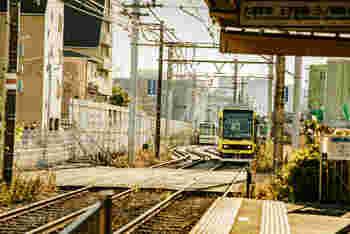 鬼子母神駅のある都電荒川線は、早稲田から三ノ輪橋までをつなぐ都内唯一の都電です。コンパクトな車両に乗ると、びゅんびゅん過ぎていくというよりは、その土地をゆったり眺めながら走っている感じ。もし、まだ乗ったことがないなら、この機会に是非。