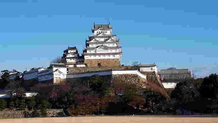 大手門をくぐり抜けると、江戸時代には政務の中心であった三の丸広場があります。現在、三の丸広場には建物は無く、大きな広場となっており公園のようになっていますが、かつては御殿や屋敷などたくさんの建物がありました。