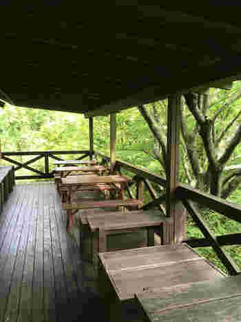 植物園内にある山小屋カフェ「エーデルワイス」。テラス席では森林浴を楽しみながら、ランチやお茶をすることができます。