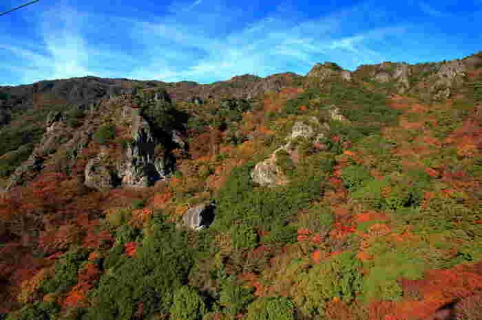 日本三大渓谷美のひとつが、小豆島の絶景である。 火山活動で誕生した景観を、ロープウェイで楽しめます。 雄大な景観と、紅葉の景色は見る価値ありです。