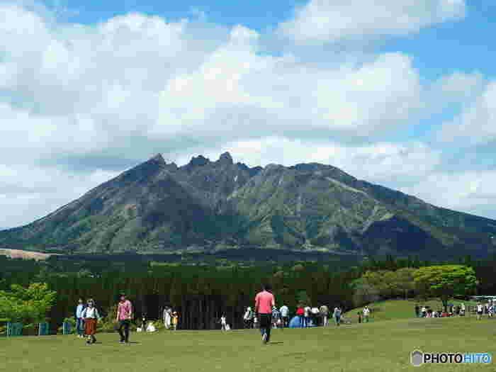 ノコギリの刃のような山容をした根子岳は、標高1433メートルの山で、阿蘇五岳(あそごがく)の一つです。独特の風貌と、眺める角度によって山の形が変わる不思議な魅力を持つ根子岳は、一年間を通じて多くのハイキング客で賑わっています。