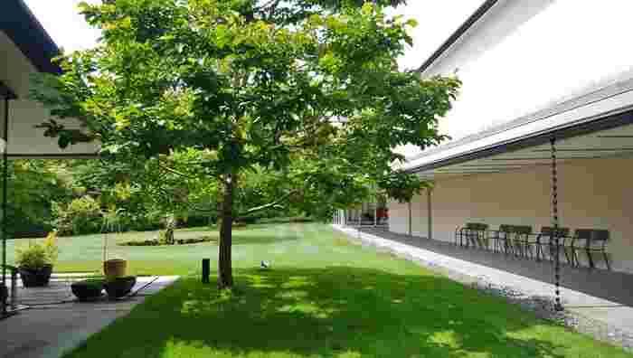 「箱根ラリック美術館」は、ミュージアムでは入場料を要しますが、広々とした庭園やレストラン、ショップは入場無料です。ラリックには興味がない方でも、気軽に足を運べる美術館です。