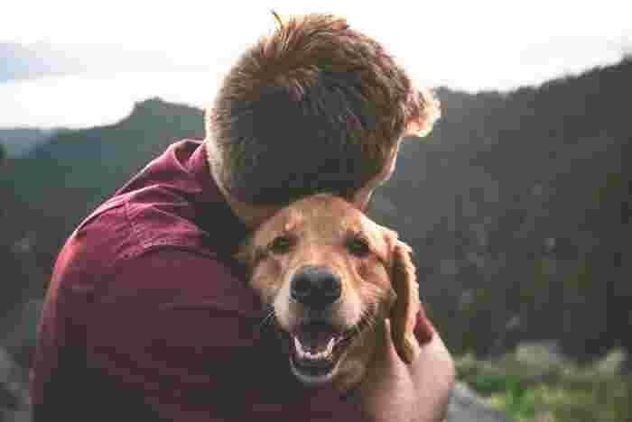 ドイツでは、ペットも家族の一員であるという意識が強く、特に犬は歴史的にも大切にされてきました。5世帯のうち1世帯は犬を飼っているとされ、飼い主は年に1度、犬の頭数に応じて週ごとに異なる金額の税金を納めます。また犬の散歩を1日2回義務付ける法律が提案されるなど、犬に対する意識は非常に高いものがあります。日本の法律では、まだペットは「物扱い」。日本人でもペットを大切にしている人にとっては当たり前ですが、やはり家族として大切に扱いたいですね。