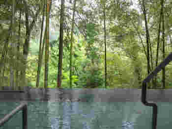 1200年もの歴史をもつ日本屈指の観光地箱根温泉郷へは 特急を利用すれば新宿から85分、品川から110分で行けるので 仕事終わりからでも、日帰りでも手軽に行ける。  箱根の温泉場は20もあり、その泉質や効能は様々。 箱根火山の麓にある「箱根湯本温泉」や「塔ノ沢温泉」などは冷え性・肩こり・腰痛解消の湯、塩化物泉が多い傾向があるとのことです。