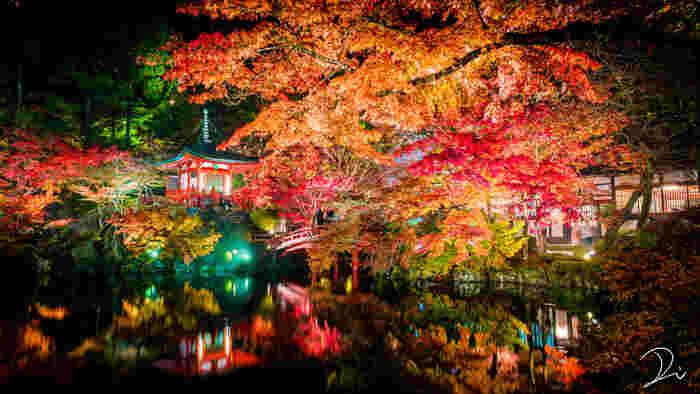 見るもの全てをうっとりとさせてる圧巻の紅葉ライトアップ。目の前の美しい紅葉と湖面に映る紅葉、2つの美しさを楽しめる夜間拝観もおすすめです。