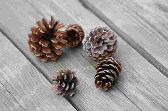 大きさの違う松ぼっくりで、個性豊かなツリーをつくってみても◎横一列に並べるととっても可愛いクリスマスインテリアになりますよ。