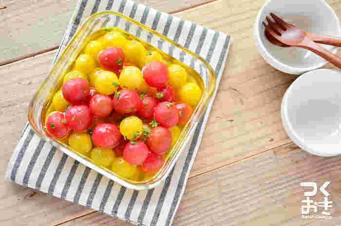 はちみつレモンならぬはちみつトマトは、夏バテにも効果的。プチトマトがたくさん手に入った時にもおすすめの、日持ちする常備菜レシピです。赤と黄色で可愛らしい見た目は、食卓にちょっと添えるだけでも目を引く一品に。