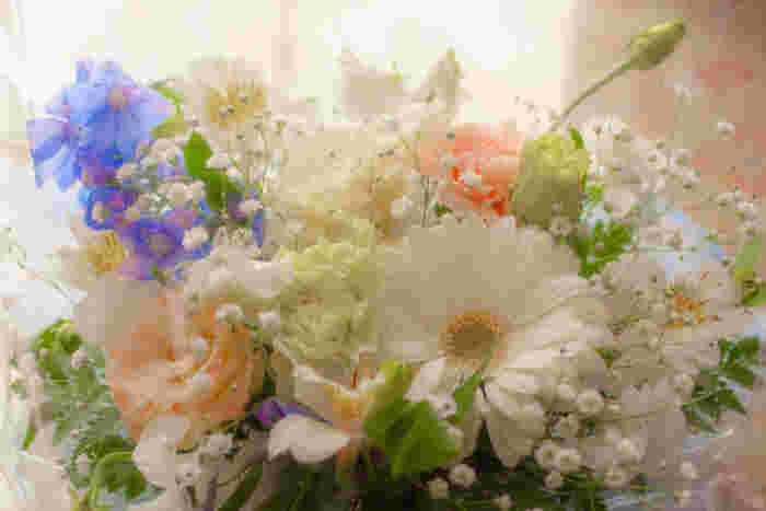この花の意味は知ってる?素敵な花言葉あつめました。