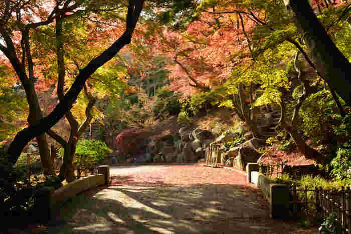 【神戸のおすすめピクニックスポット】気持ちいい季節は外でのんびり過ごしたい!